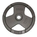 gietijzeren-halterschijven-50mm