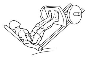 leg-press-uitvoering-beginstand