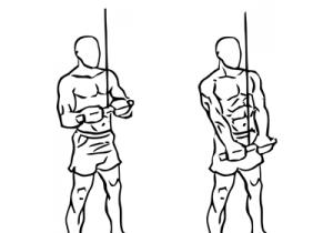 triceps pushdown oefening thumbnail