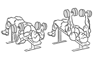 decline-dumbbell-bench-press2