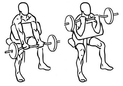 Preacher Curl - isolatie-oefening voor brachialis en biceps - uitvoering en techniek