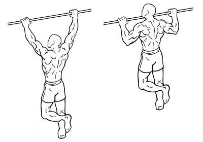 Pull-ups/Optrekken uitvoering en techniek. Welke spieren gebruik je bij pull-ups?